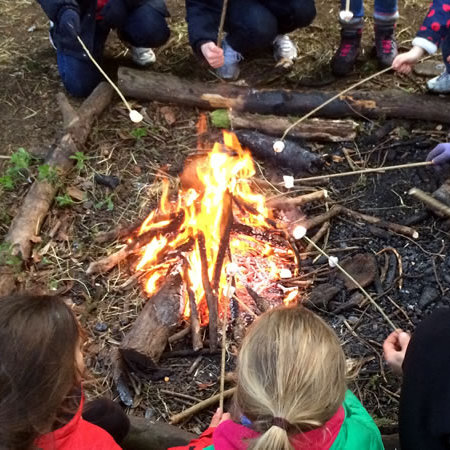 Bush Craft at Ripley Castle