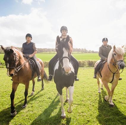 Half Hour Horse Riding Experience near Sheffield