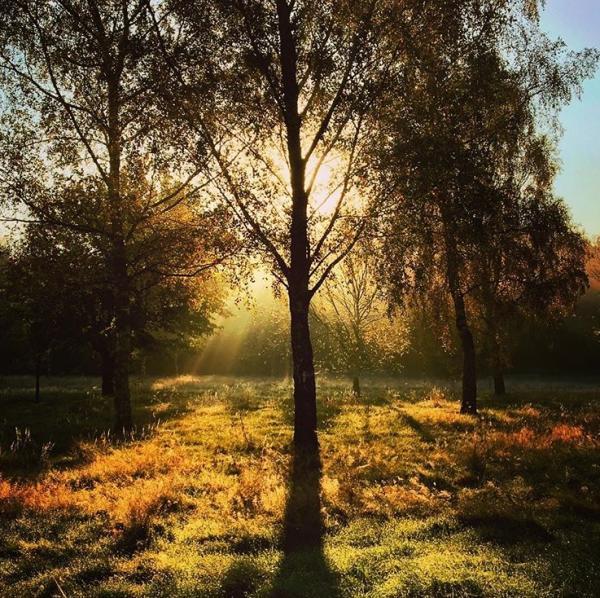Autumn Adventures in Yorkshire